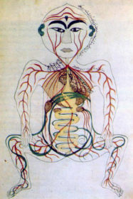 17th_century_Persian_digestive_system