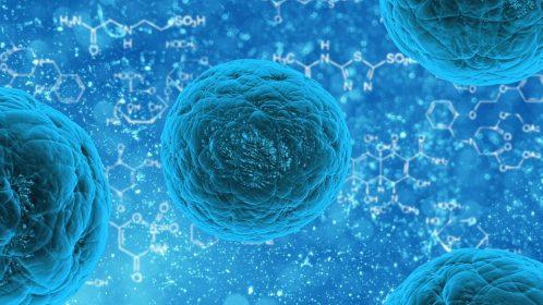 stem-cell-163711_960_720
